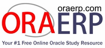 ORAERP.COM - The Knowledge Center for Oracle ERP Professionals - Looking Beyond the Possibilities